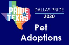 DFW Pet Adoptions