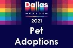 Dallas Pride 2021 Pet Adoptions